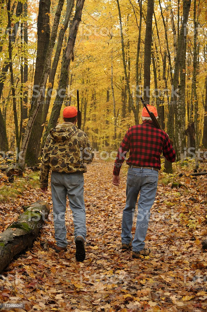 Two Into the Woods royalty-free stock photo