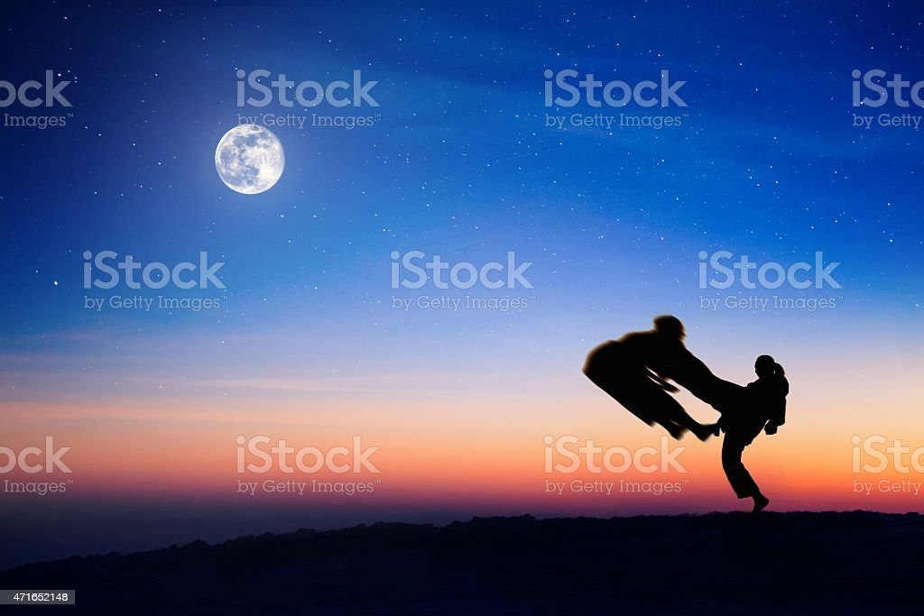 Two karate fighter silhouettes at starry sky stock photo