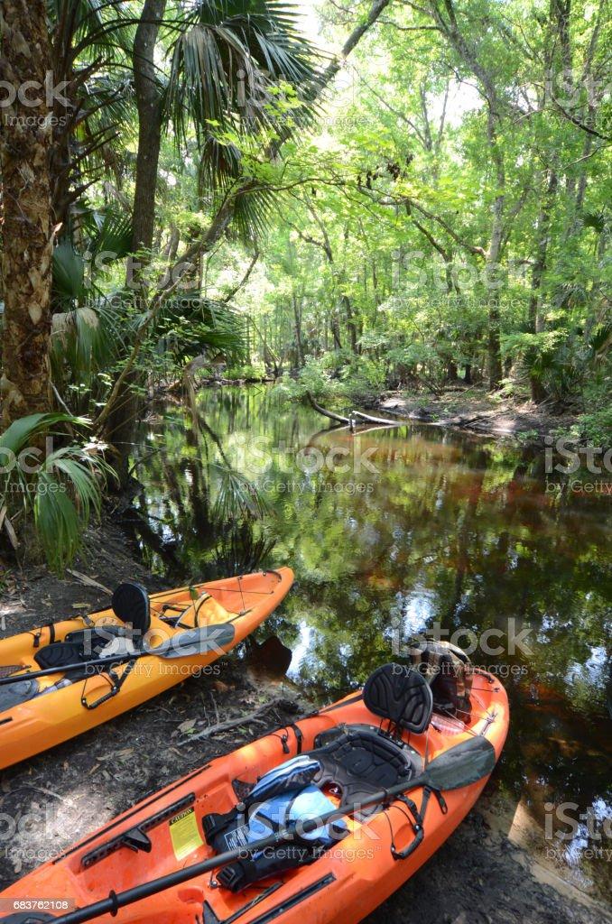 Two kayaks on jungle river bank stock photo