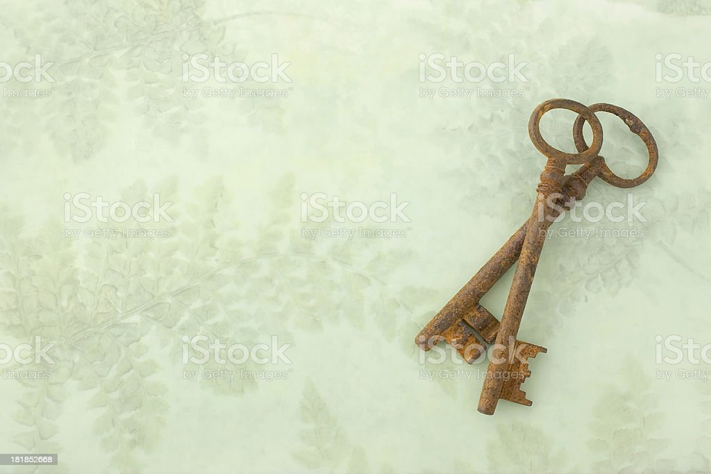 Two Keys royalty-free stock photo