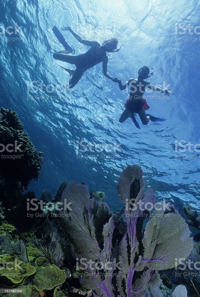 Two Kid's Snorkeling royalty-free stock photo