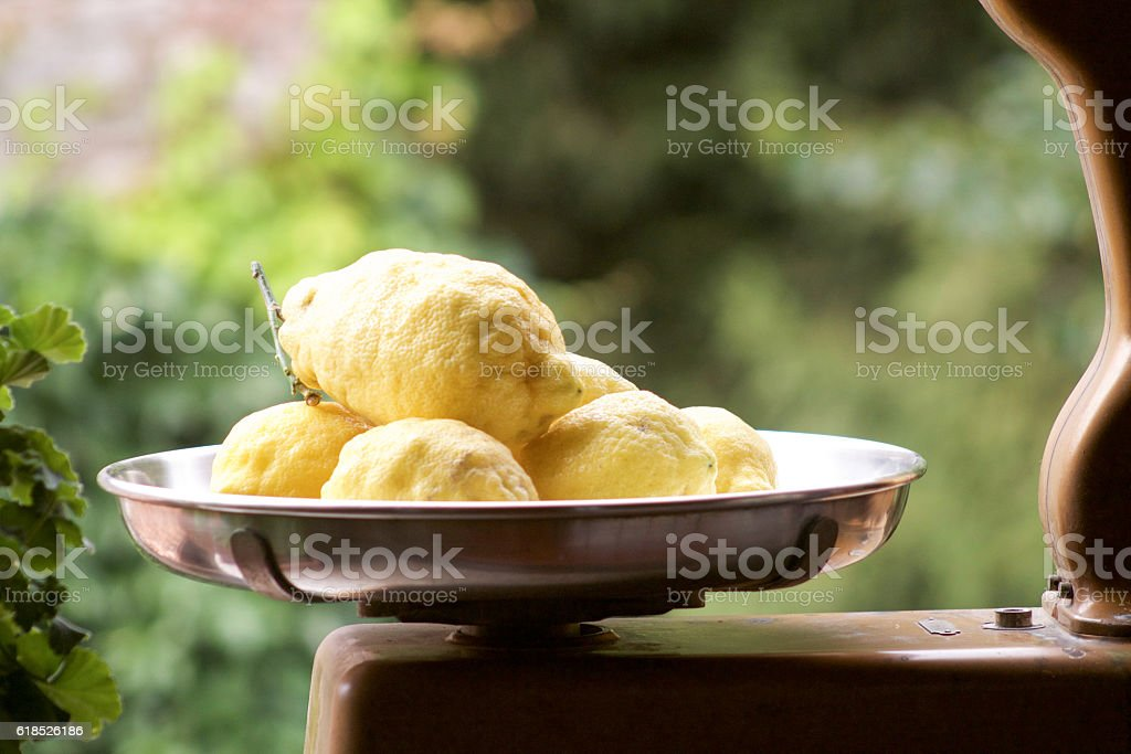 two kilograms of fresh and scented lemons from Amalfi stock photo