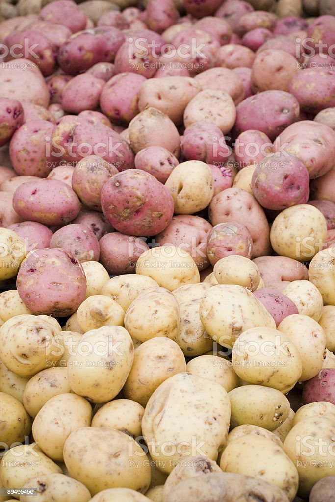 Two Kinds of Potatoes royalty-free stock photo