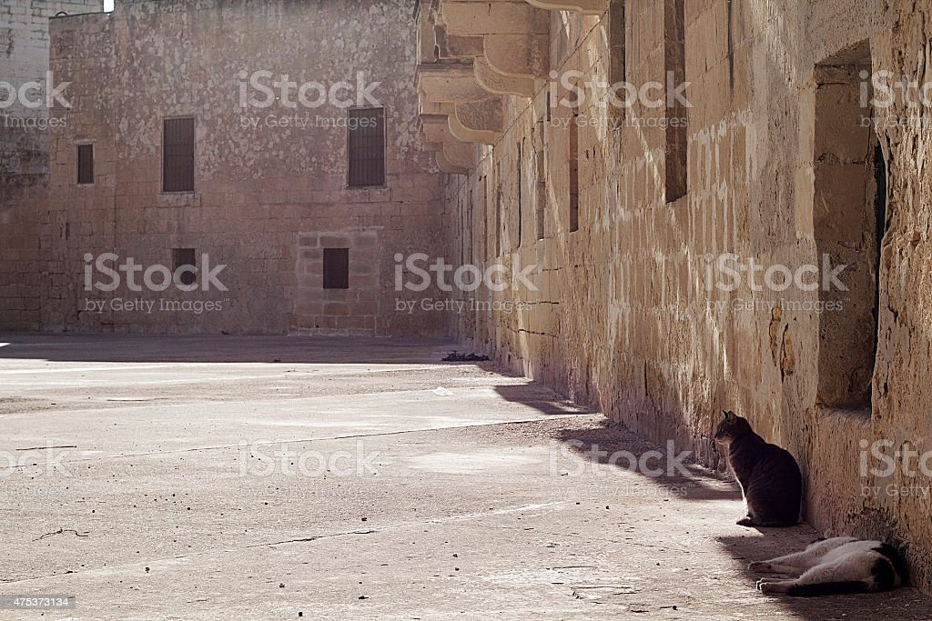 Due rilassante a Malta foto stock royalty-free