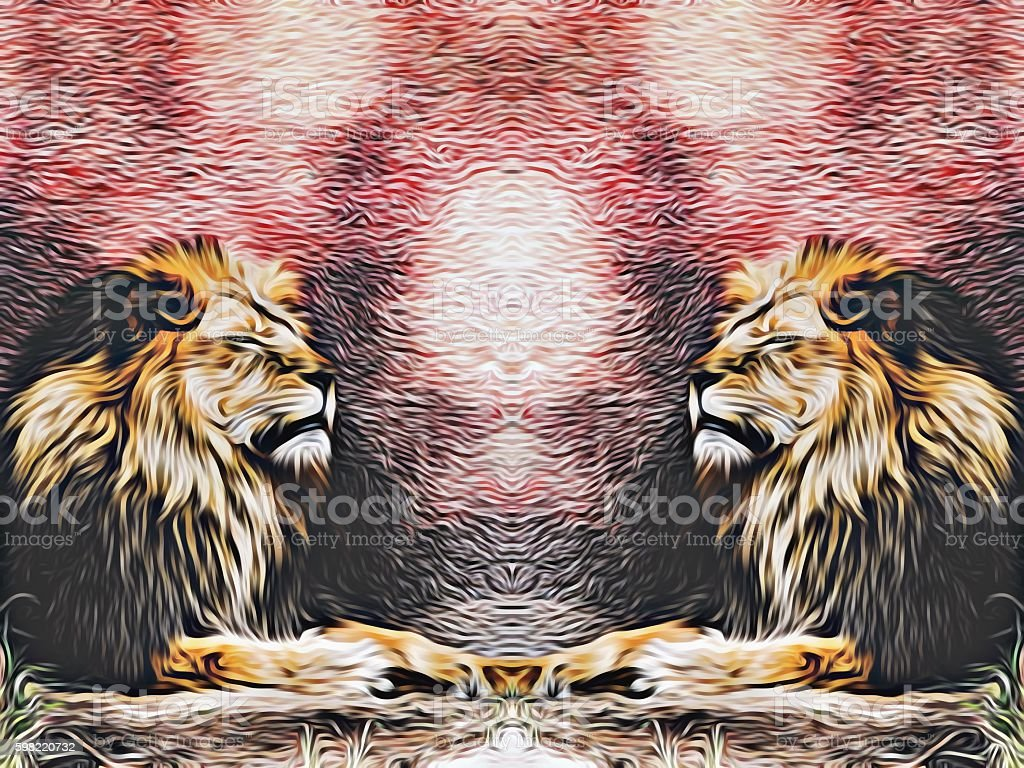 two lions with red and black background stock photo