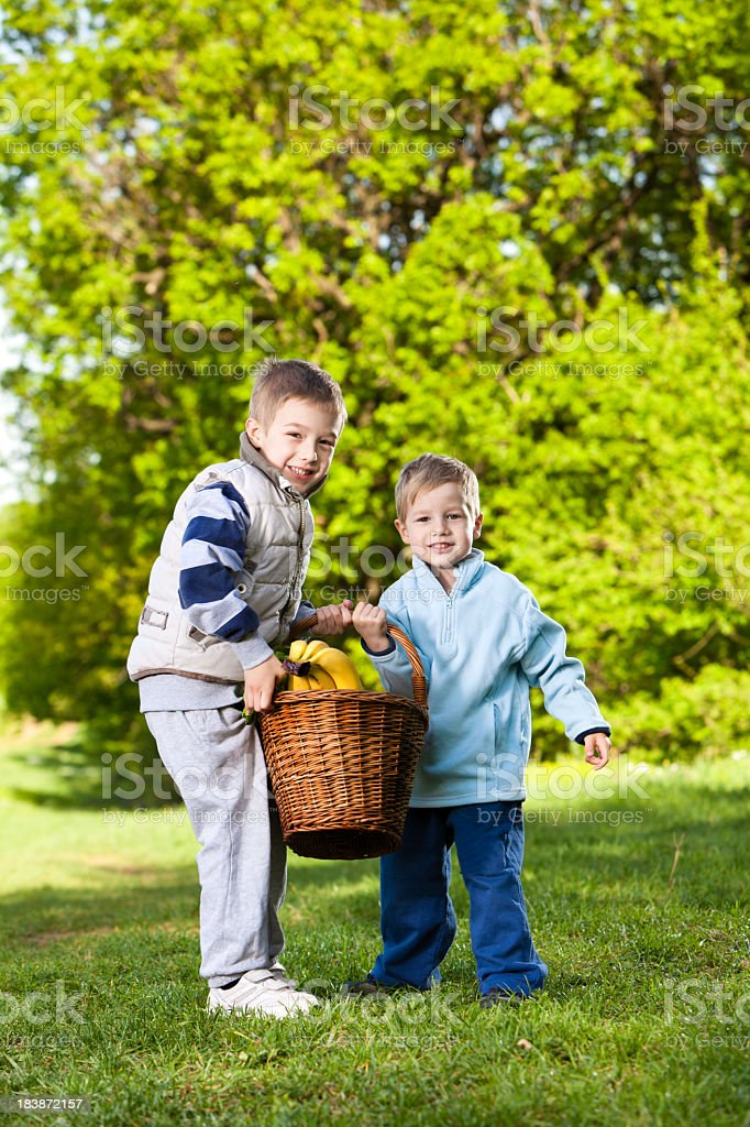 Two little boys carying a picnic basket royalty-free stock photo