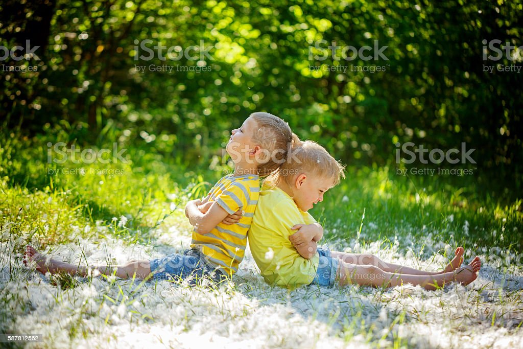 Two little boys , friends ,  resentful kids in summer day . Conc stock photo