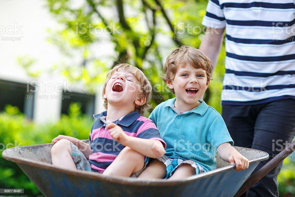 Two little boys having fun in wheelbarrow pushing by father stock photo