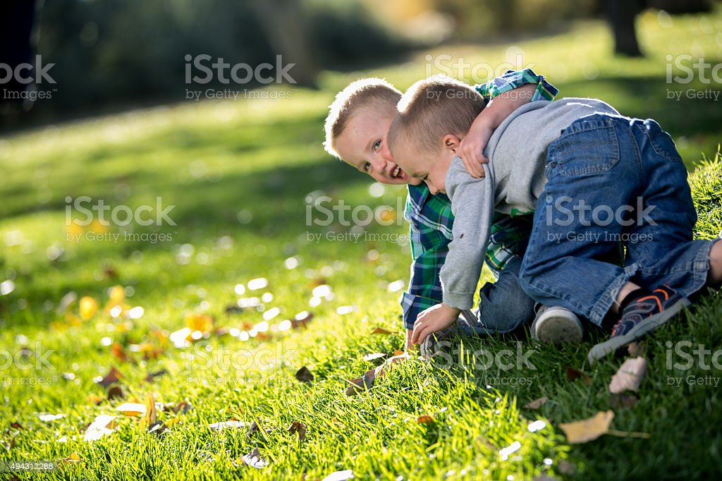 Two Little Boys Wrestling on the Grass in a Park stock photo