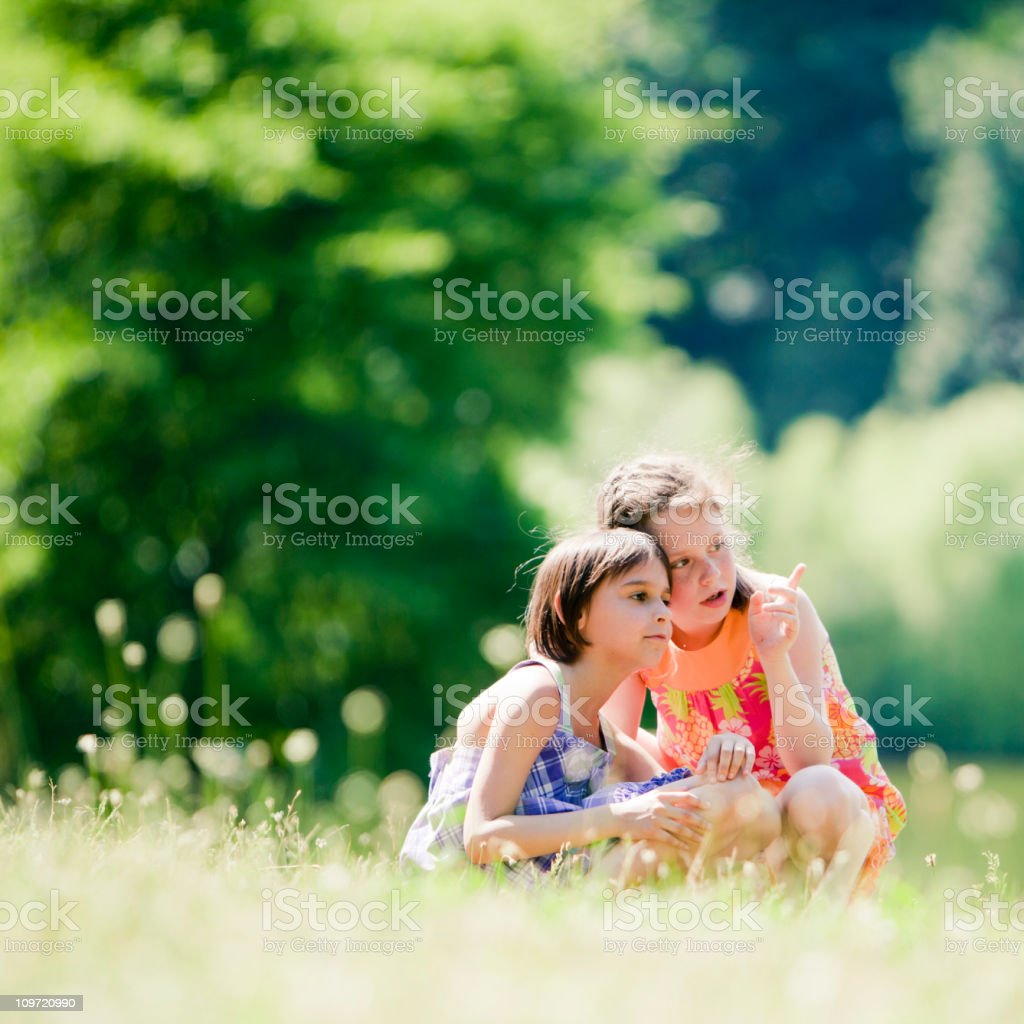two little girl in the summer park royalty-free stock photo