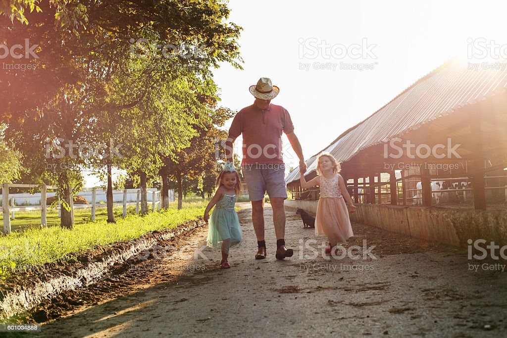 Two little girl with grandfather on the farm. stock photo