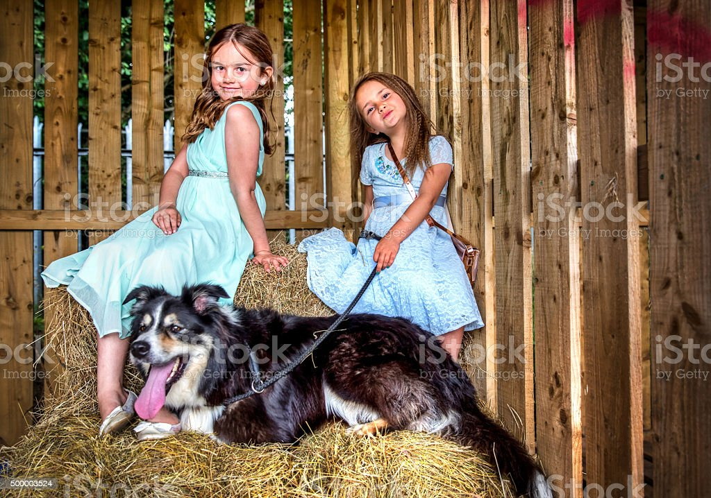 Two little girls and their dog stock photo