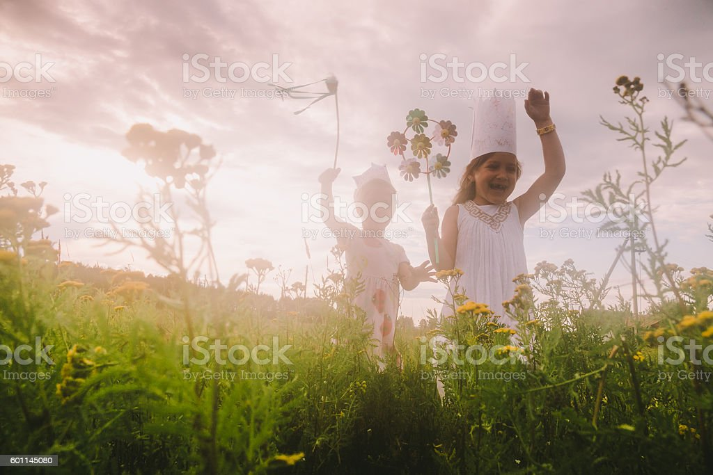 Two little girls playing on meadow stock photo
