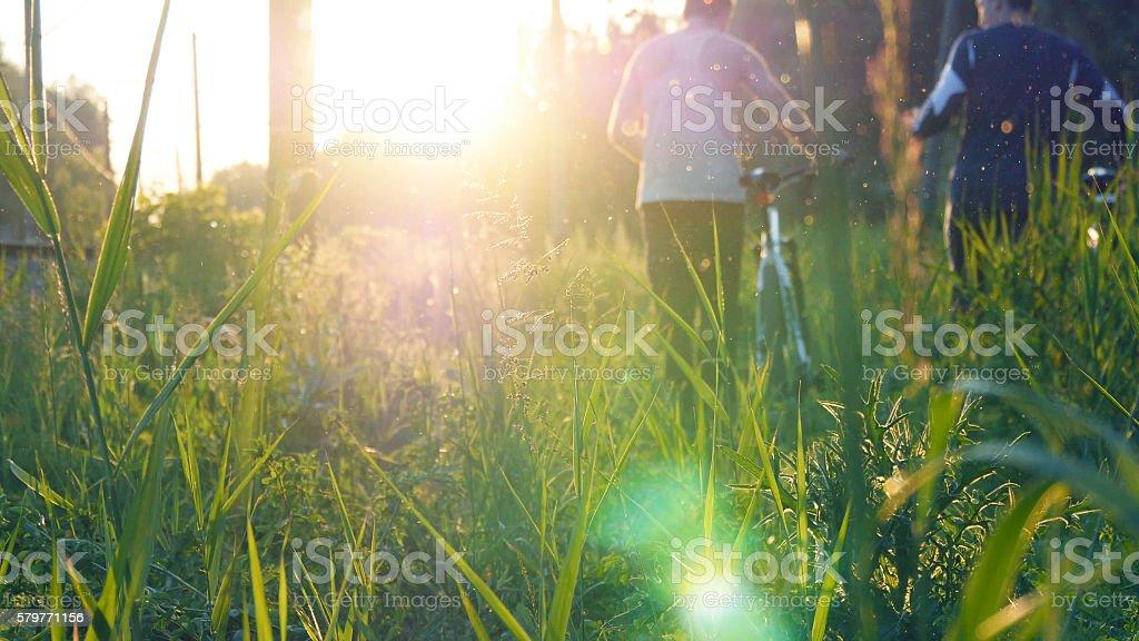Two male friends walking with their bikes through green grass foto de stock libre de derechos