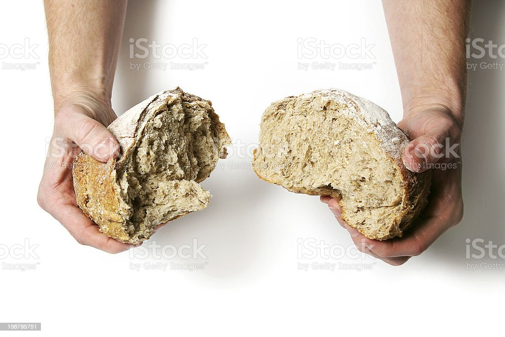 Two male hands break a brown loaf of bread in two stock photo