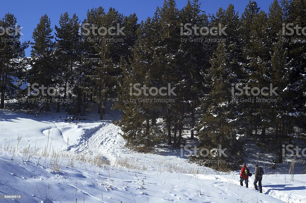 Two man snowshoer climbing in winter mountains royalty-free stock photo