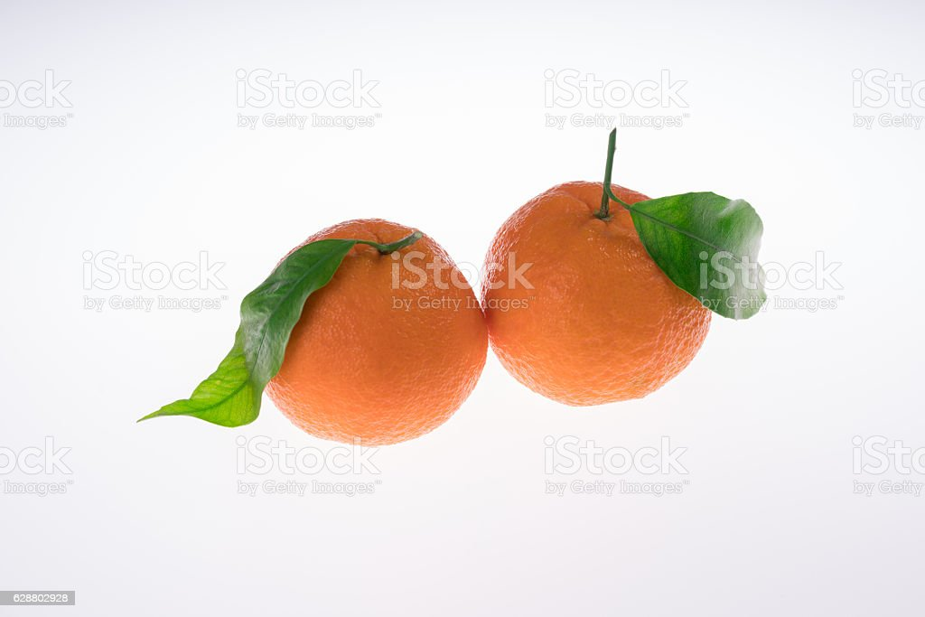 two mandarin with Leafs stock photo