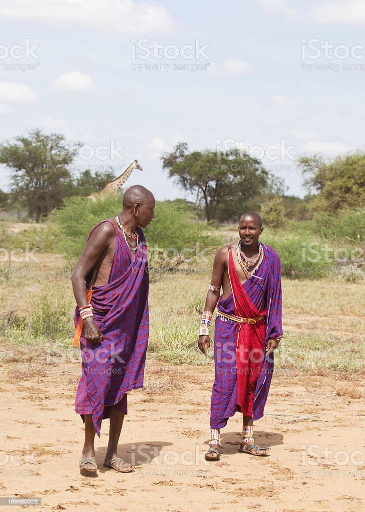Two masaj warriors in the bush with giraffe. Kenya royalty-free stock photo