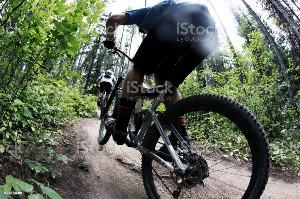 Two men compete in a cross-country mountain bike race in the Rocky Mountains of Canada.. stock photo