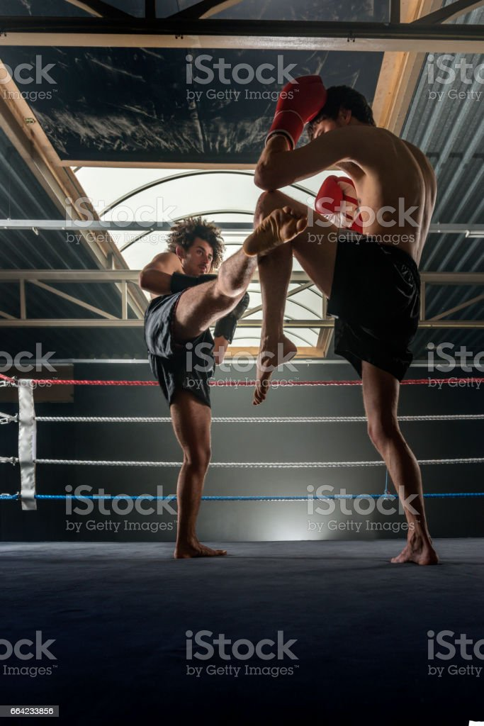 Two men free fighting stock photo