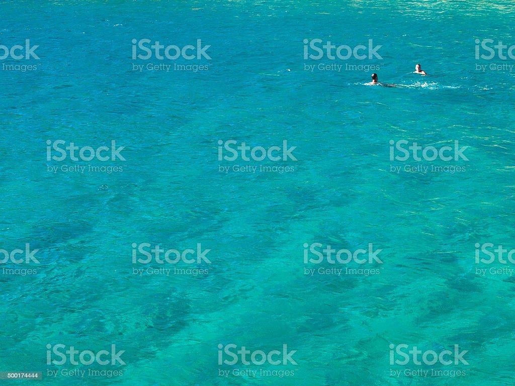 Two men swimming in the Sea, Croatia stock photo