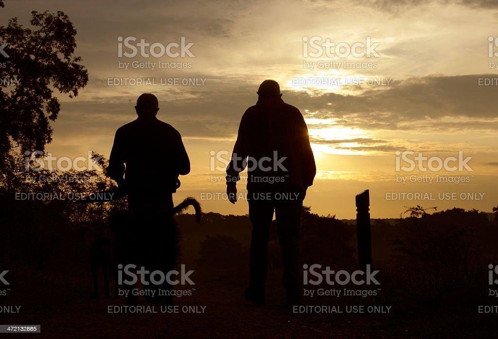Two men walking at sunrise stock photo