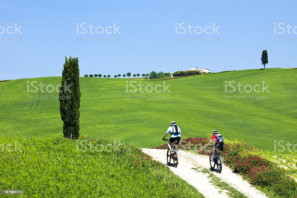 Two Mountain Bikers on Country Road in Tuscany Landscape, Italy stock photo
