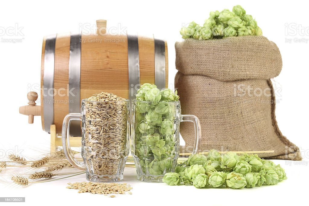 Two mugs with barley and hop. royalty-free stock photo