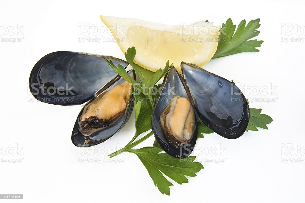 two mussels with lemon and parsley royalty-free stock photo