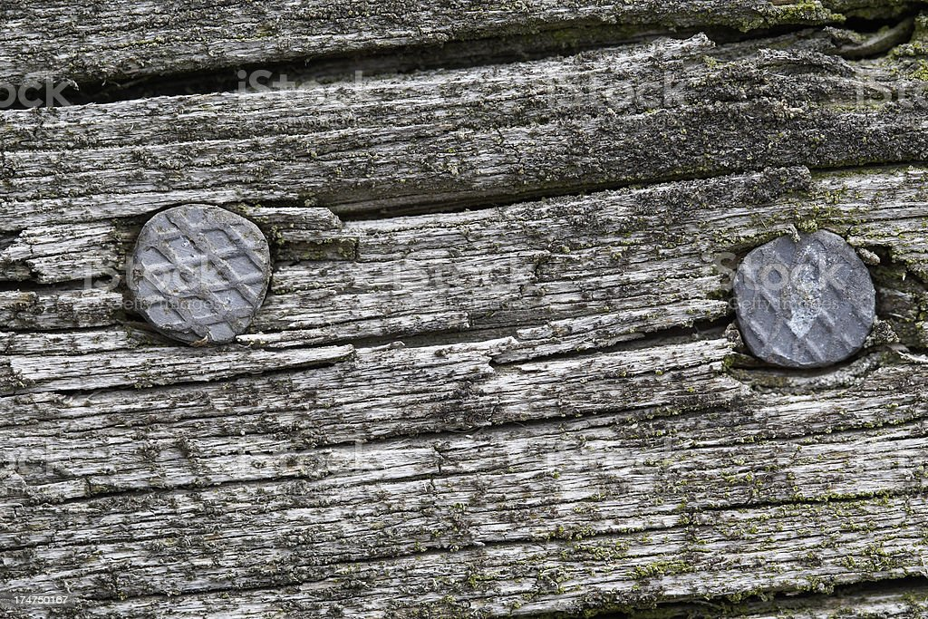 Two nails in a old aged gray plank stock photo