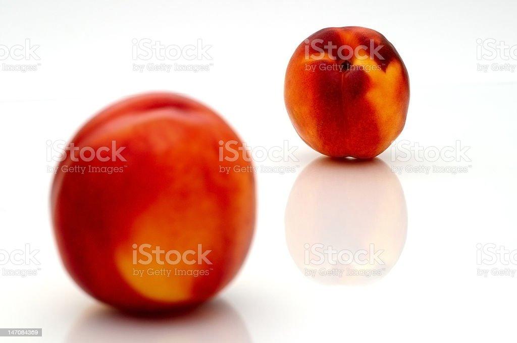 two nectarine on white background royalty-free stock photo