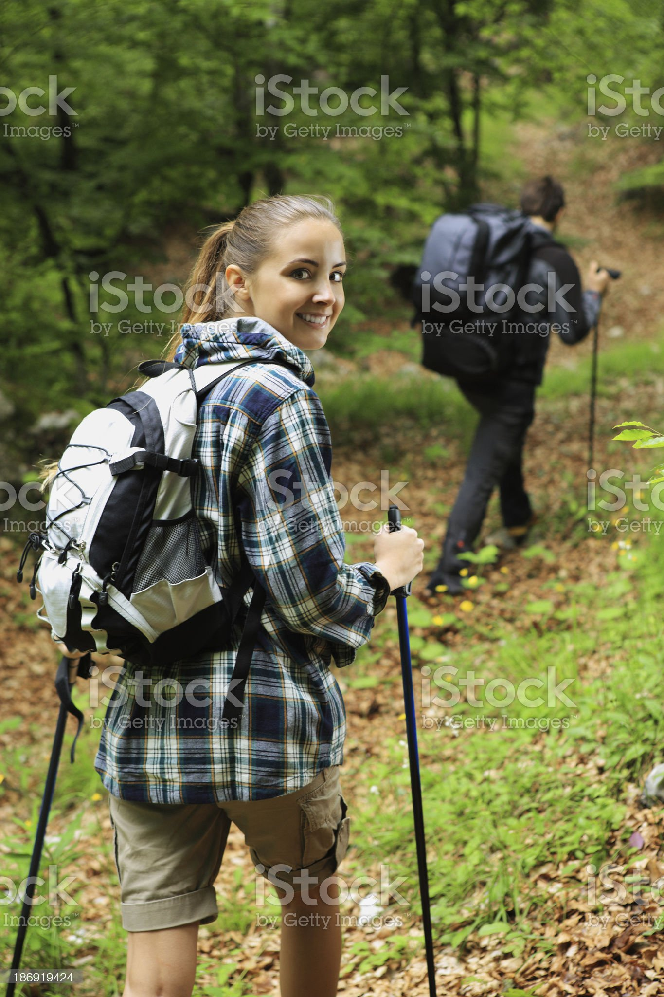 Two nordic walkers royalty-free stock photo