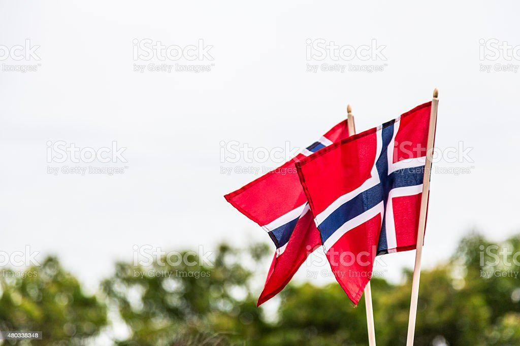 Two Norwegian flags blowing in the wind stock photo