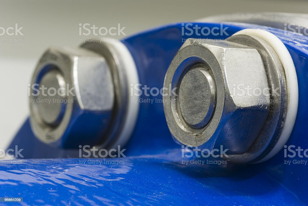 two nut stock photo