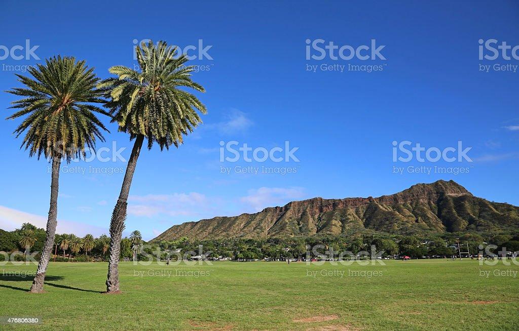 Two palm trees and Diamond Head stock photo