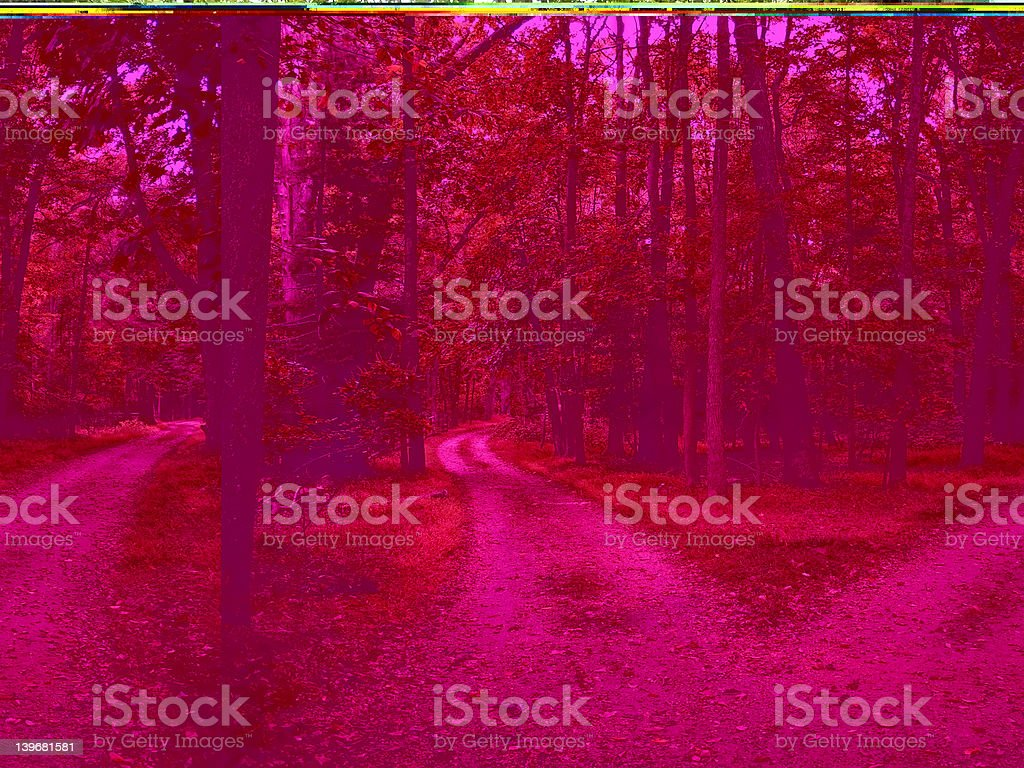 Two Paths stock photo