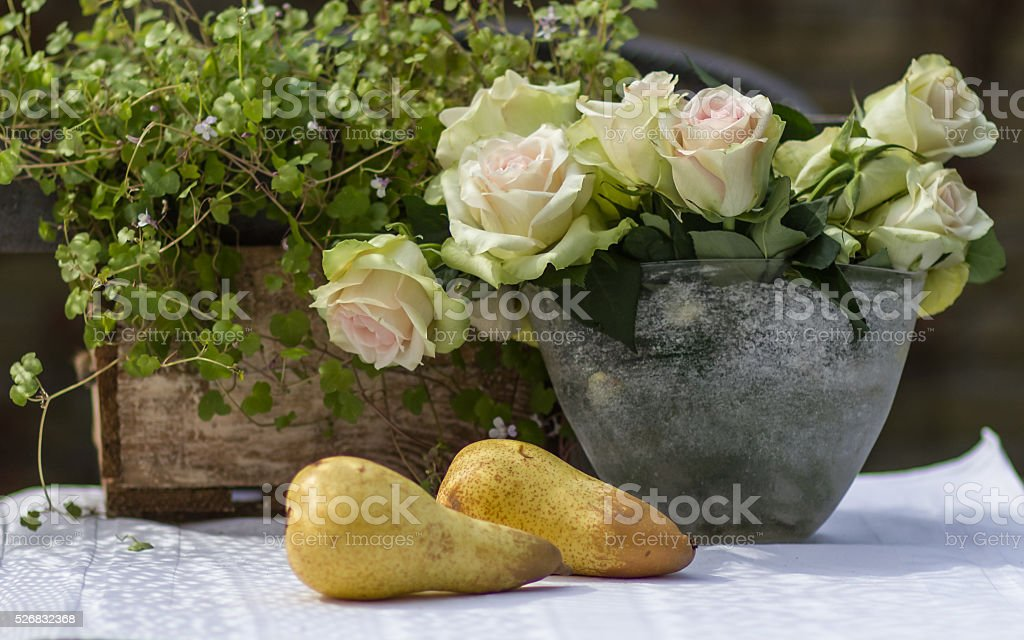 Two pears with white roses stock photo