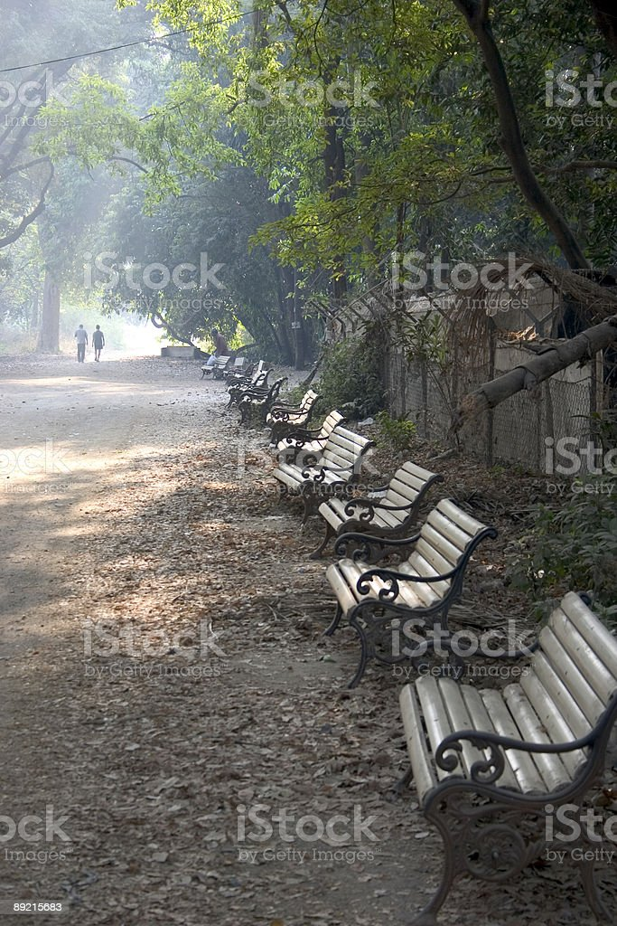 Two People going for the Morning Walk in Indian Park royalty-free stock photo