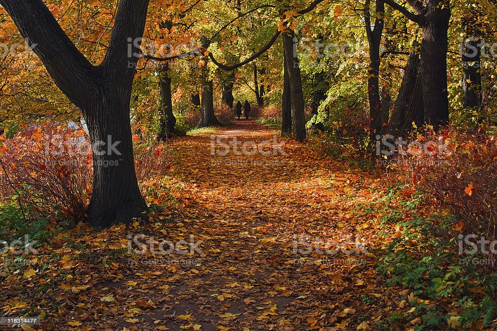 Two people in the distance walking on park at Indian summer royalty-free stock photo