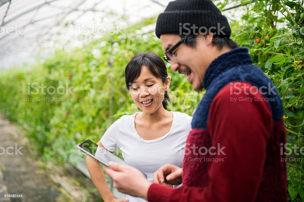 Two people using a digital tablet in a greenhouse stock photo