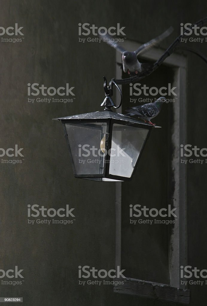 Two pigeons and a lamp stock photo