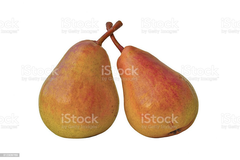 two pink pear royalty-free stock photo