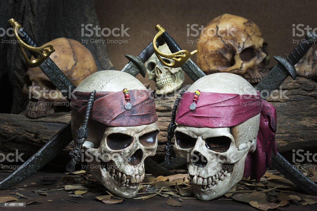 Two Pirate skull over three human skull in the forest stock photo