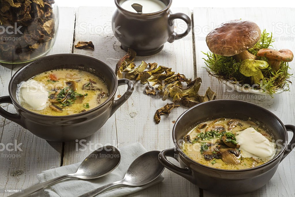 Two plates of mushroom soup and fresh ingredients stock photo