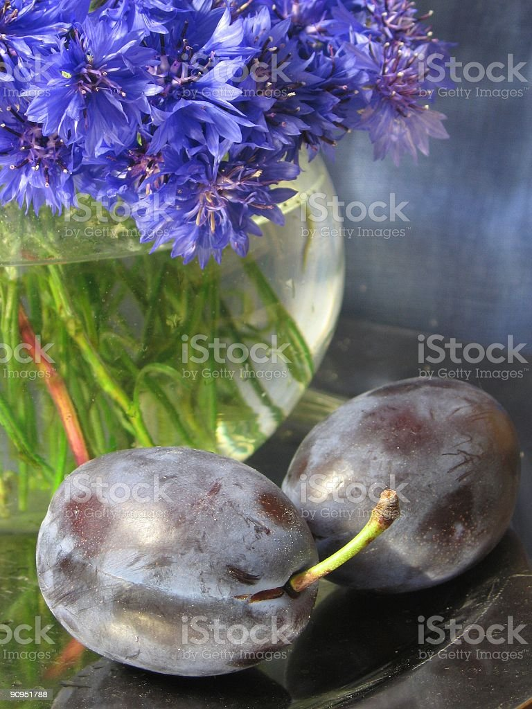 two plums royalty-free stock photo