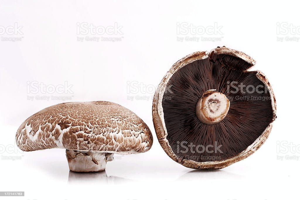 Two Portobello mushrooms from different angles royalty-free stock photo