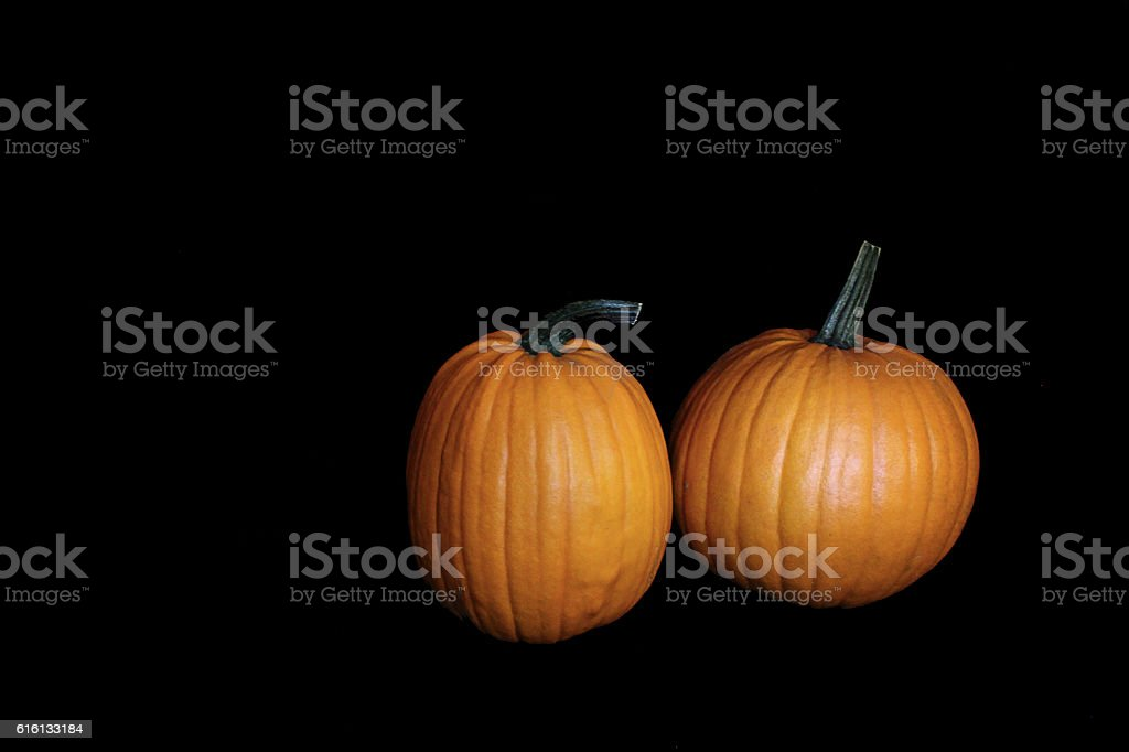 Two Pumpkin in the Dark stock photo