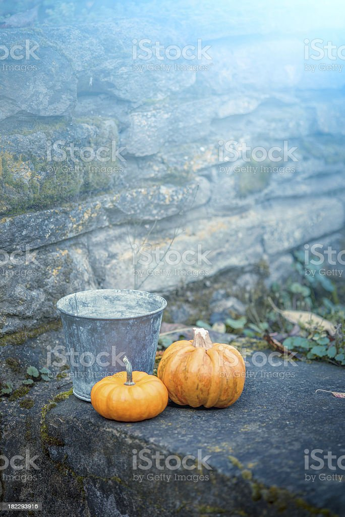 Two pumpkins in a dreamy garden royalty-free stock photo
