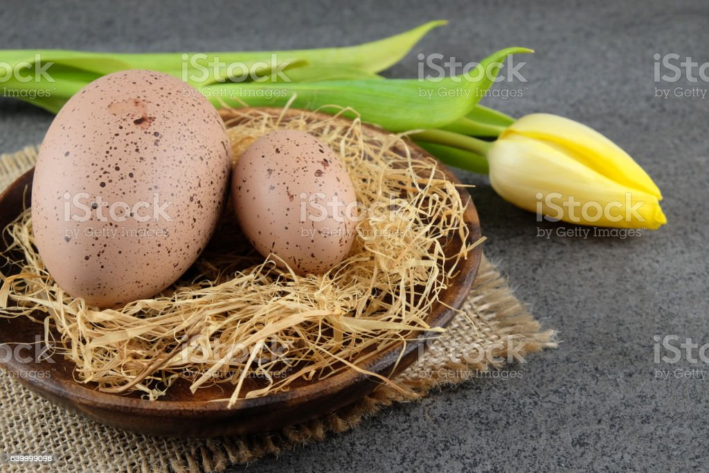 Two quail easter eggs and yellow tulip on dark background. stock photo