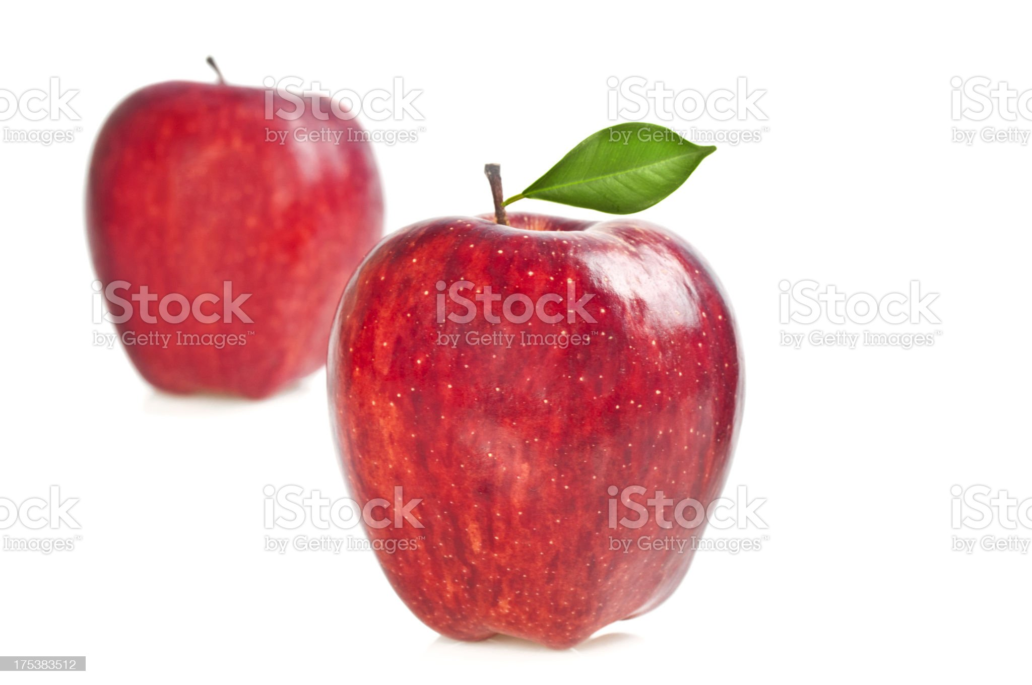 Two red apples royalty-free stock photo